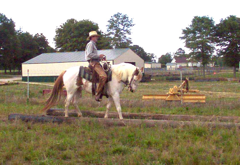 Improving straight horse backing, also confidence course poles used for sidepassing training exercise