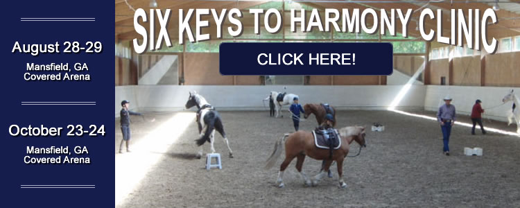 Six Keys to Harmony Clinic Ed Dabney