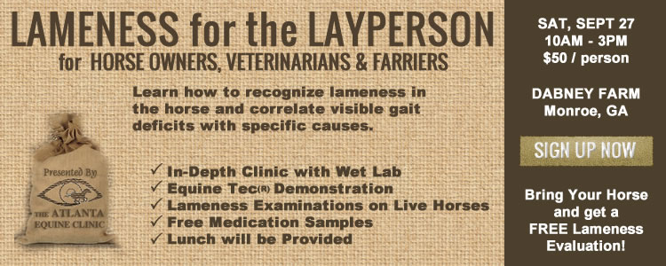 Clinic - Lameness for the Layperson