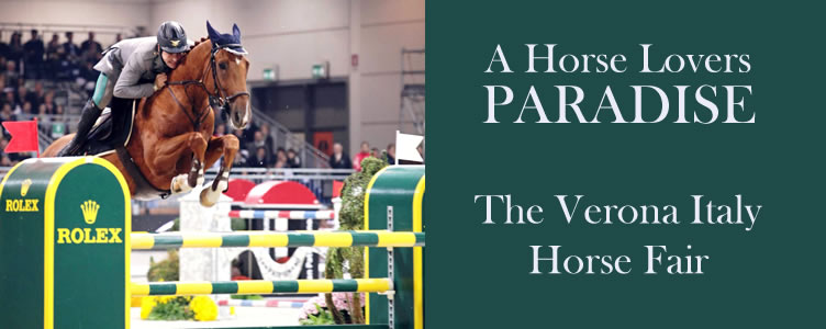 A Horse Lovers Paradise - The Verona Italy Horse Fair