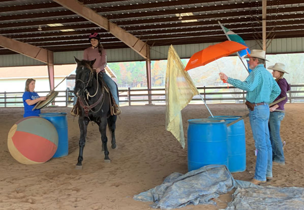 Despooking Your Horse Clinic