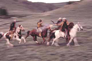 Mounted horse action, training,  in movie and feature film, television